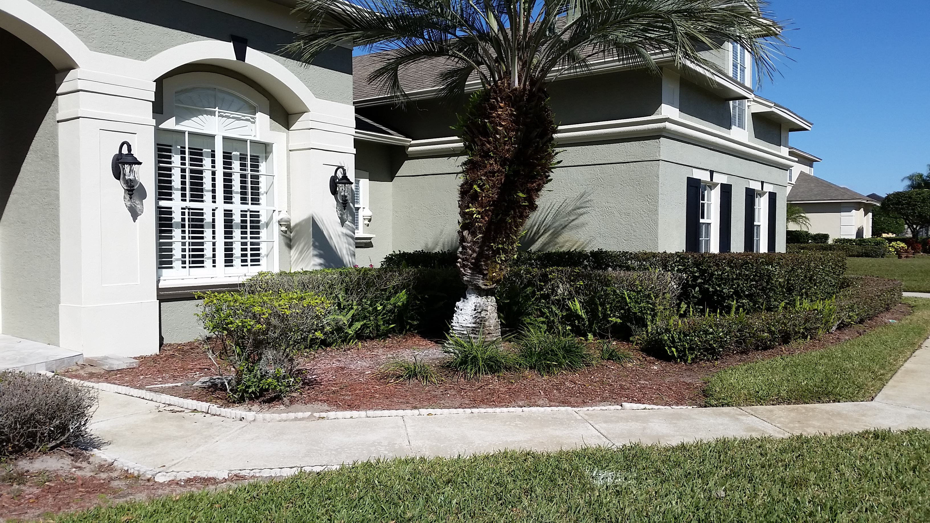 Before Picture of a Windermere FL Landscape needing redesign