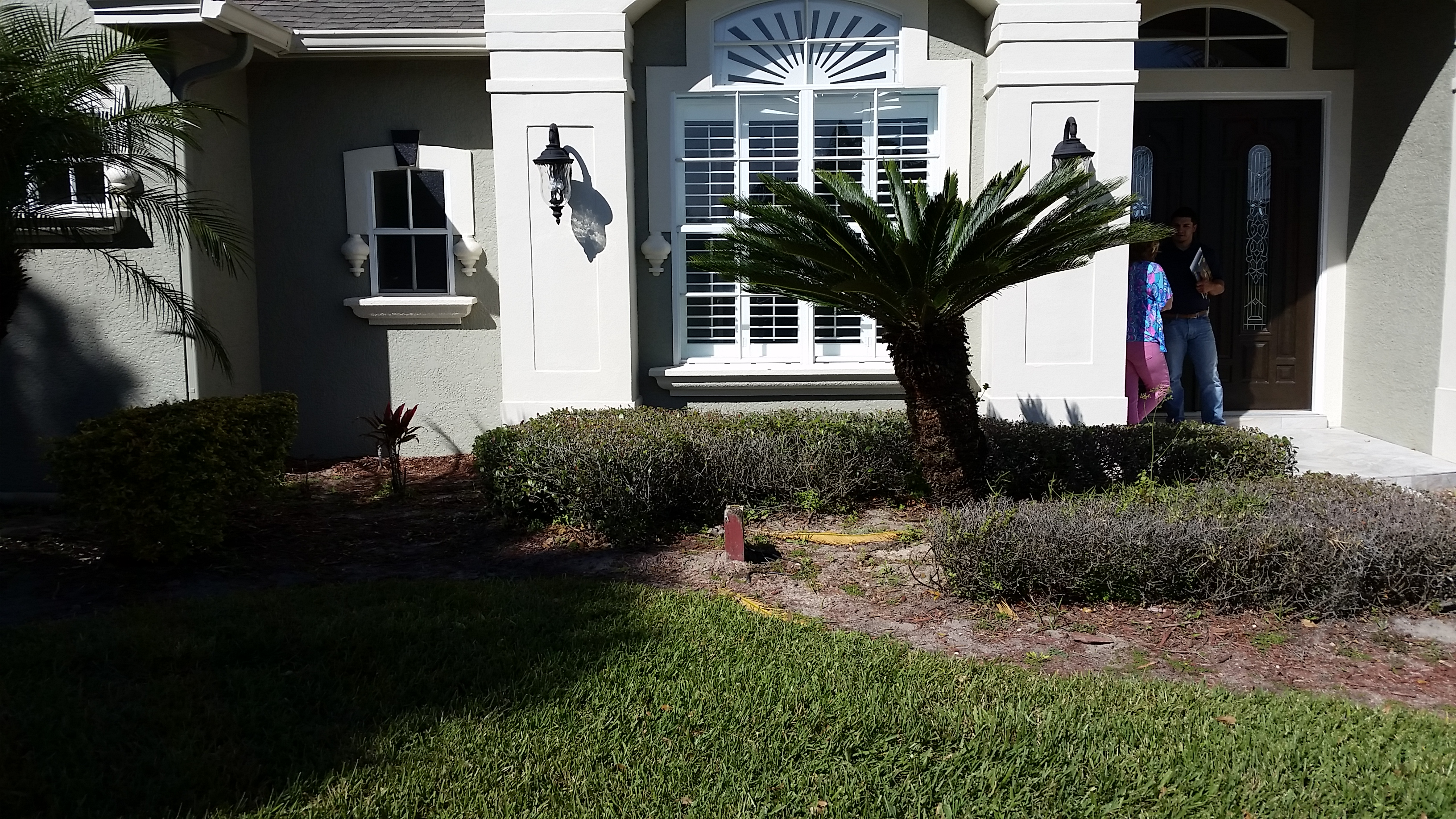 Before Picture of a Windermere, FL residential Landscape that needs a redo