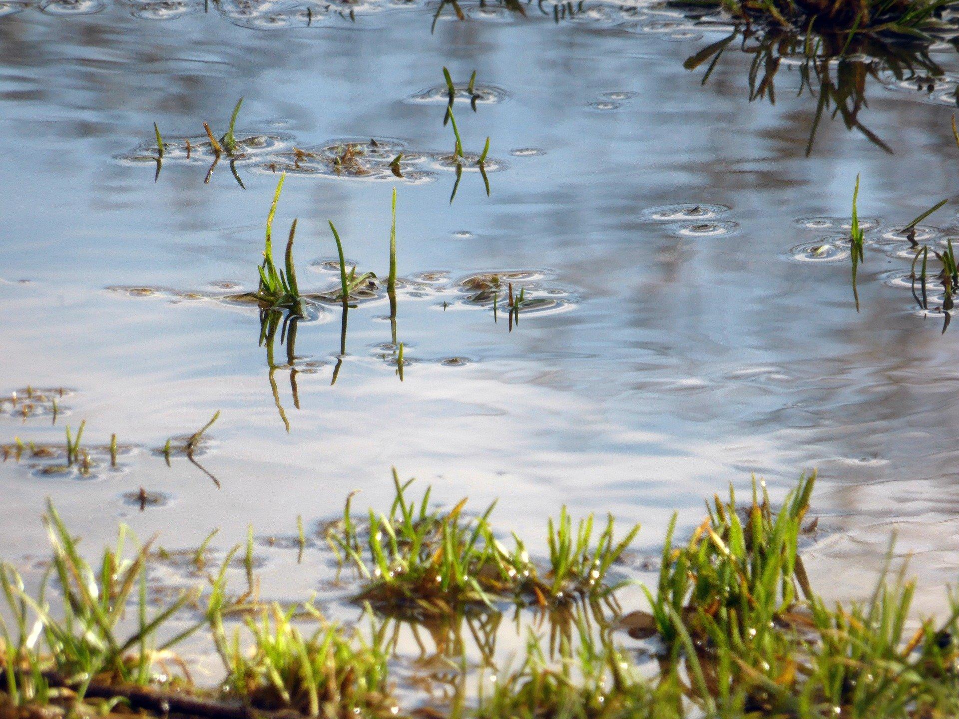 yard drainage french drains orlando fl