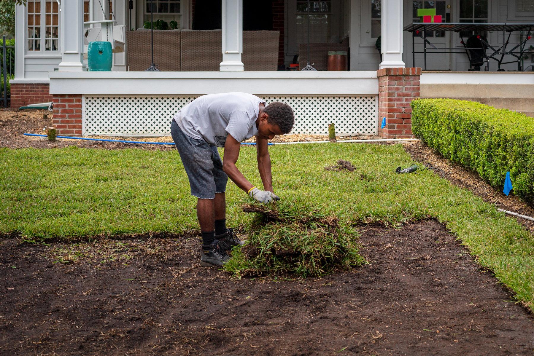 Landscape crews installing sod