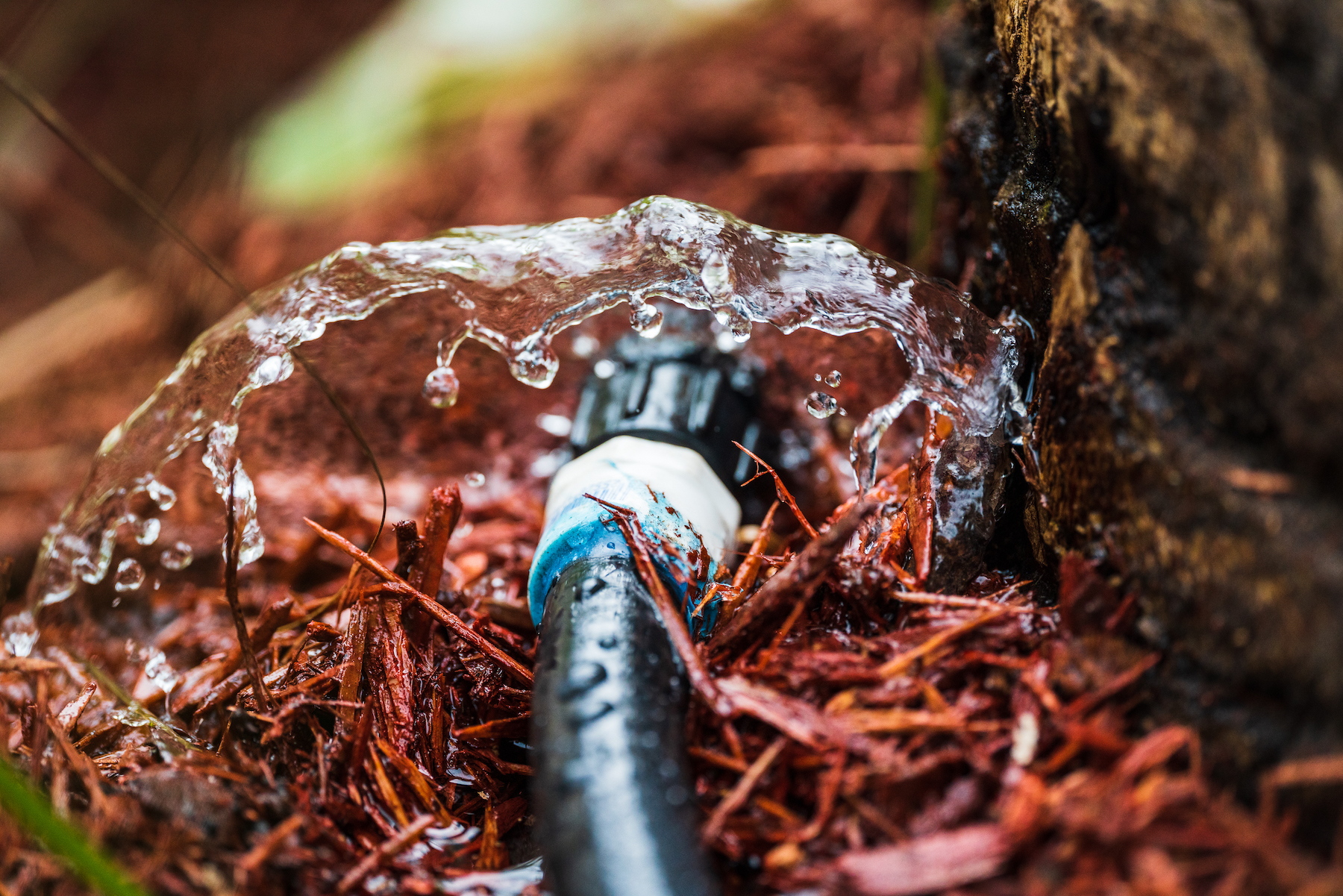 irrigation bubbler