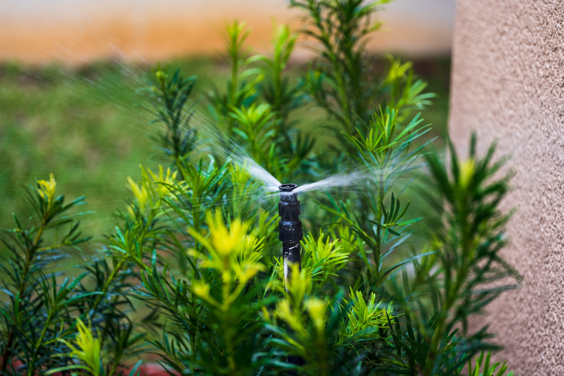 Spray Irrigation Head