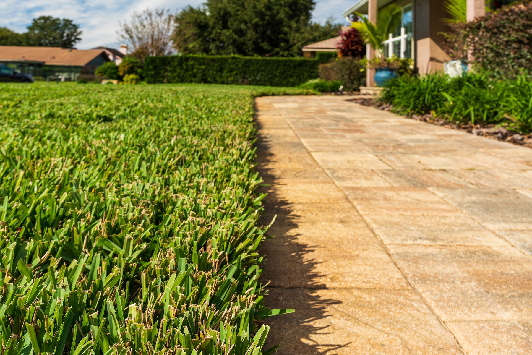Correct pitch in paver patios and walkways help with drainage