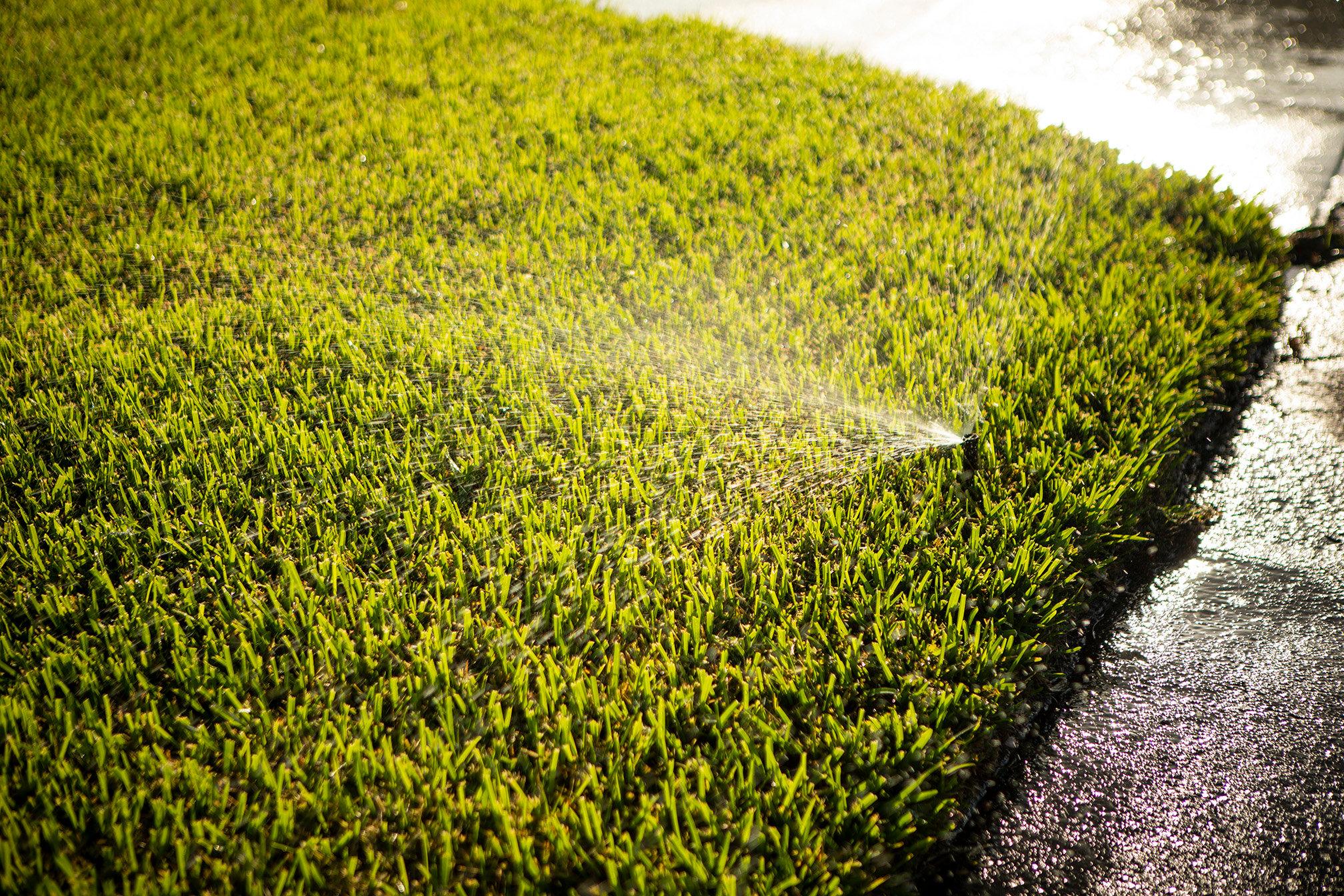 irrigation head spraying lawn in Florida