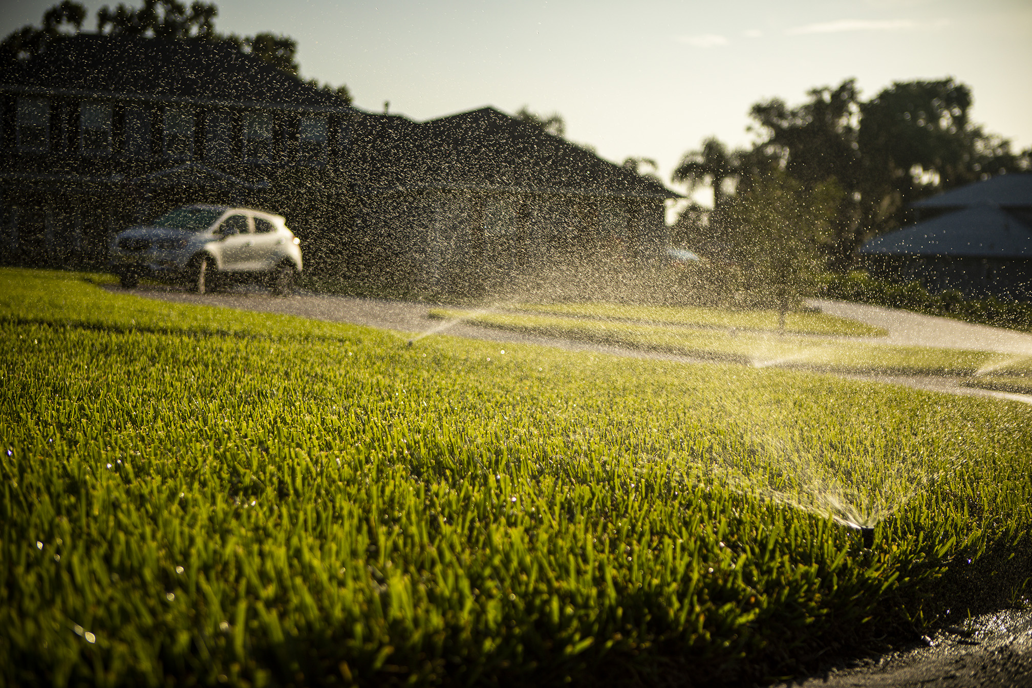 Lawn irrigation for water conservation