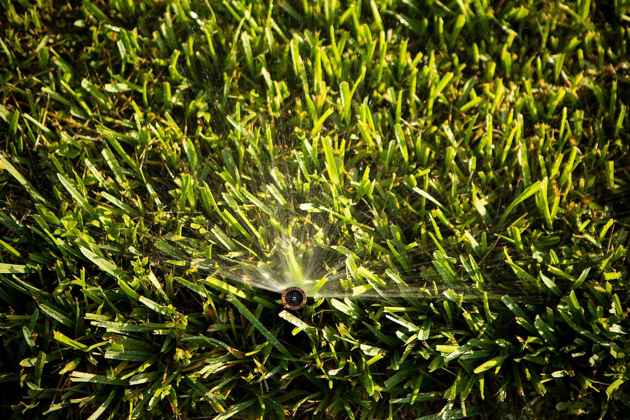 grass-irrigation-5