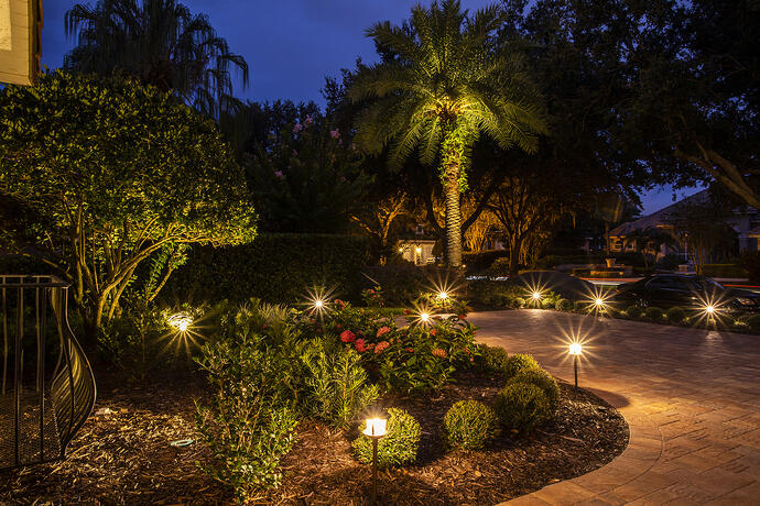 Walkway and plant bed with professional landscape lighting