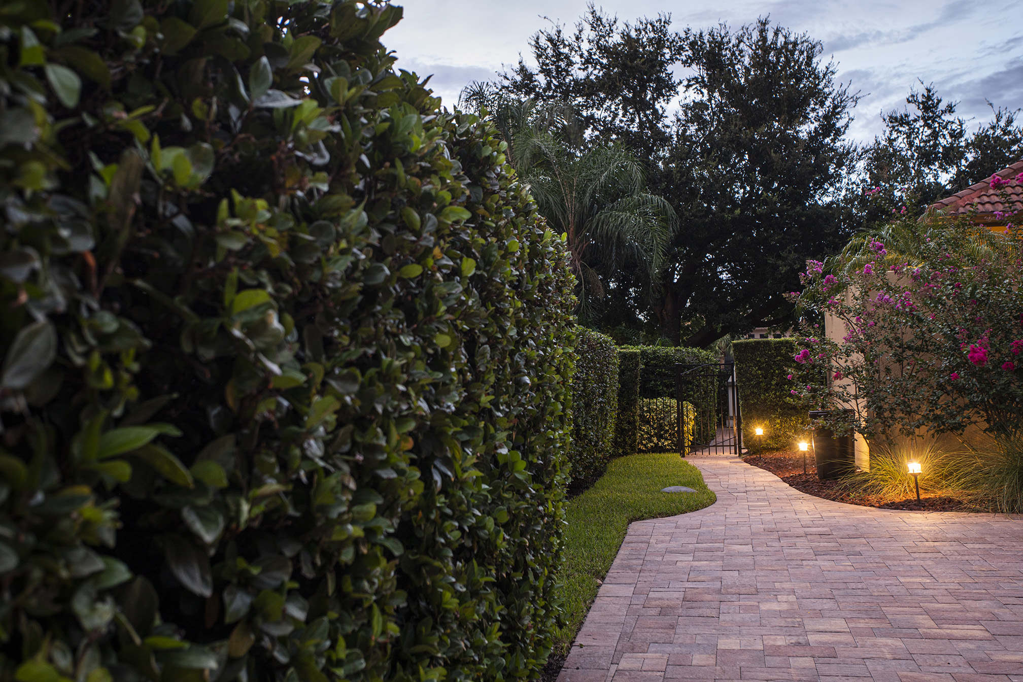 lawn landscape lighting plantings paver 219