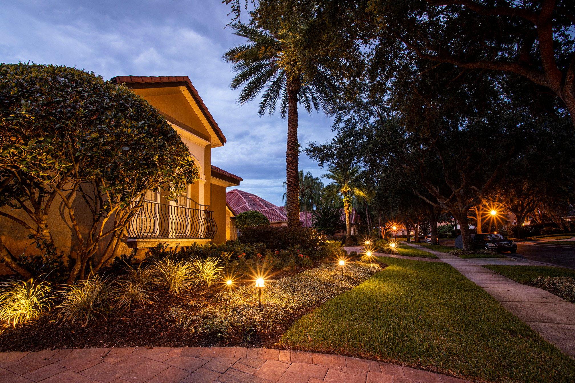 Landscape lighting enhancing plants
