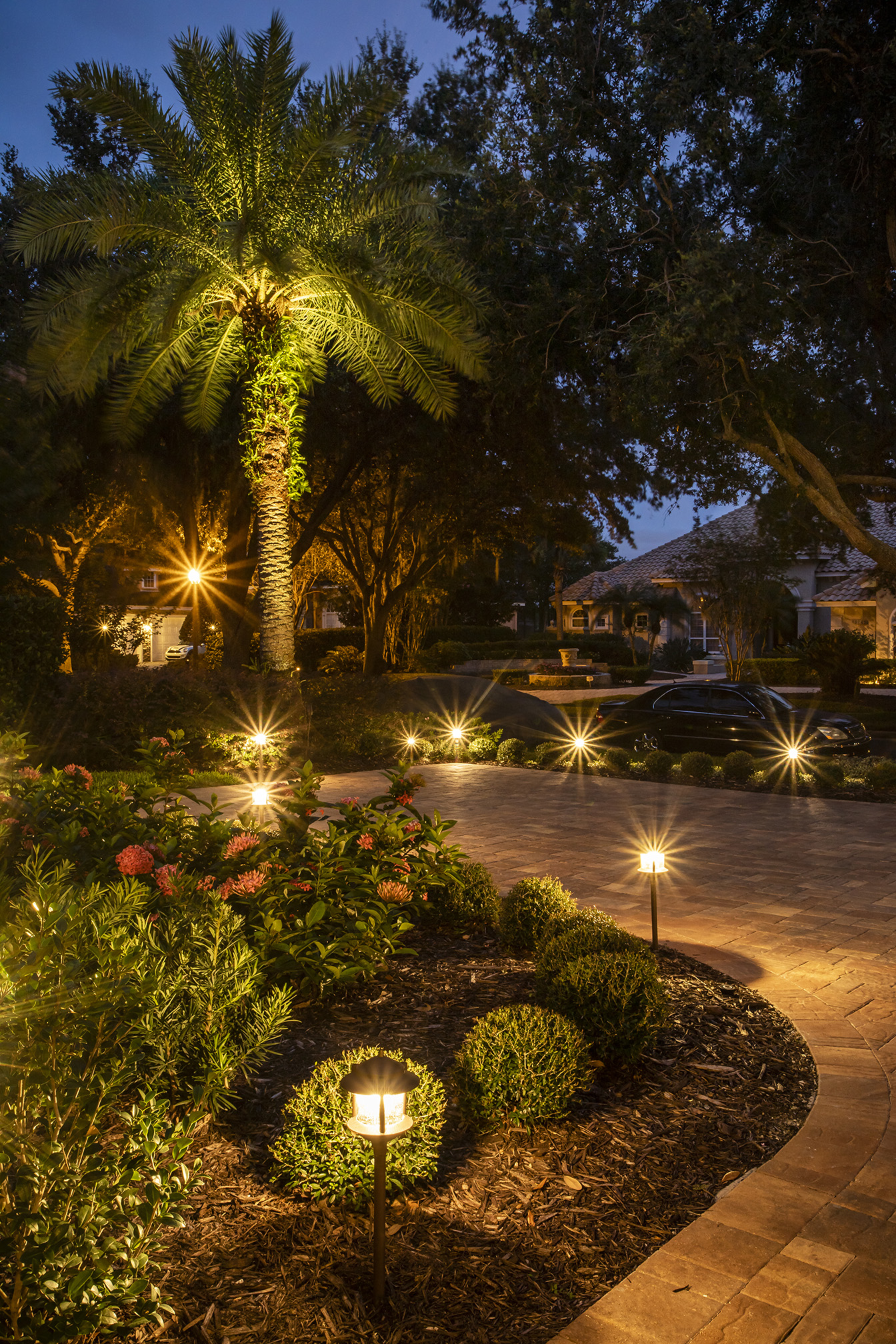 landscape lighting for patio, trees and shrubs