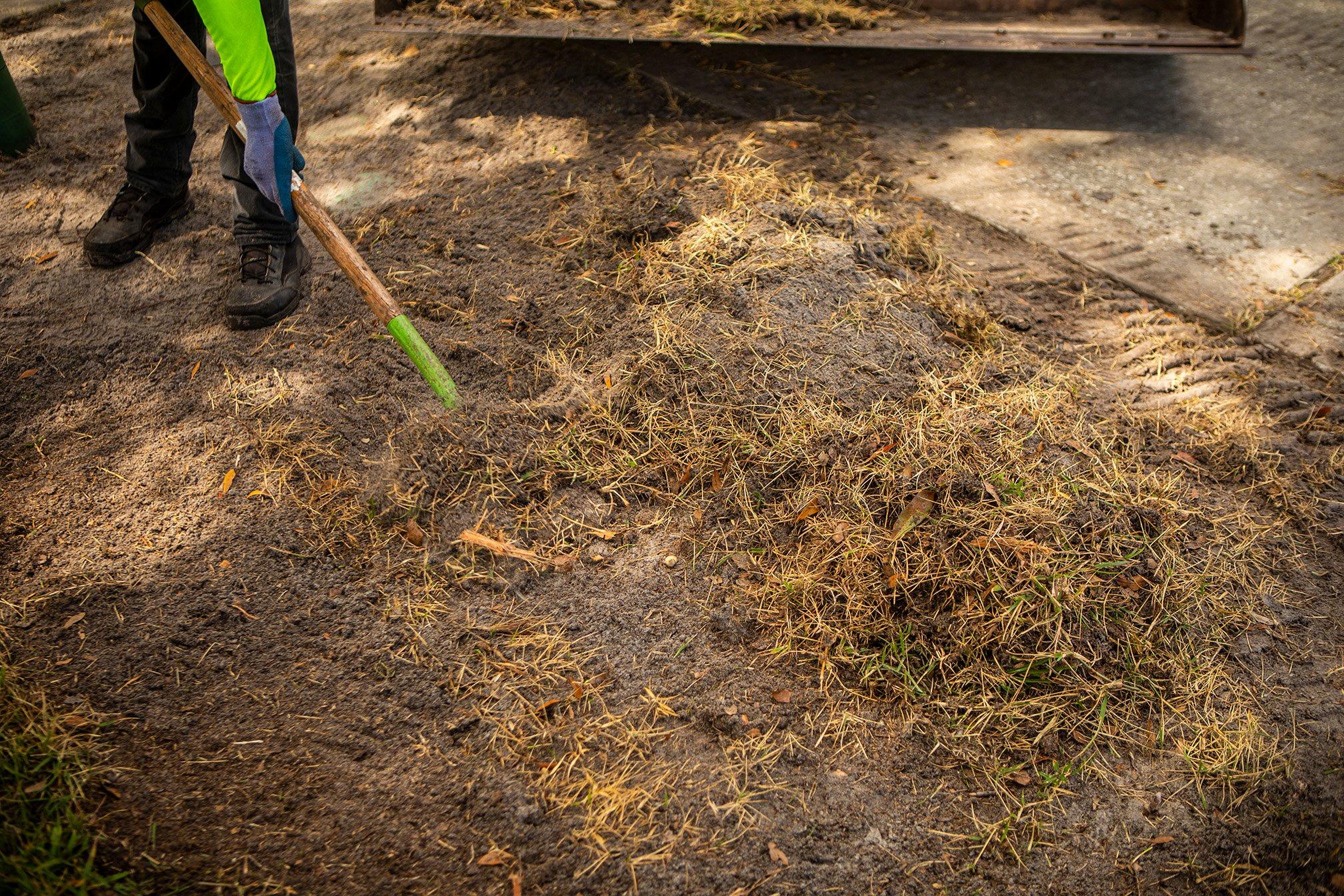 Repairing a dead lawn