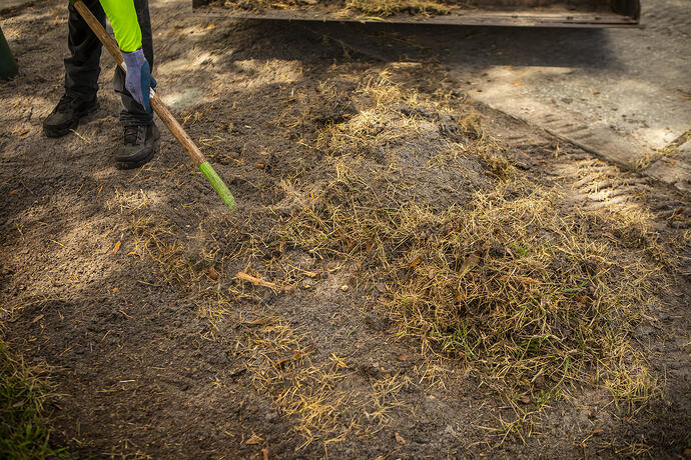 lawn team skid steer dead lawn sod removal
