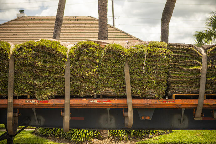 healthy sod delivery and installation