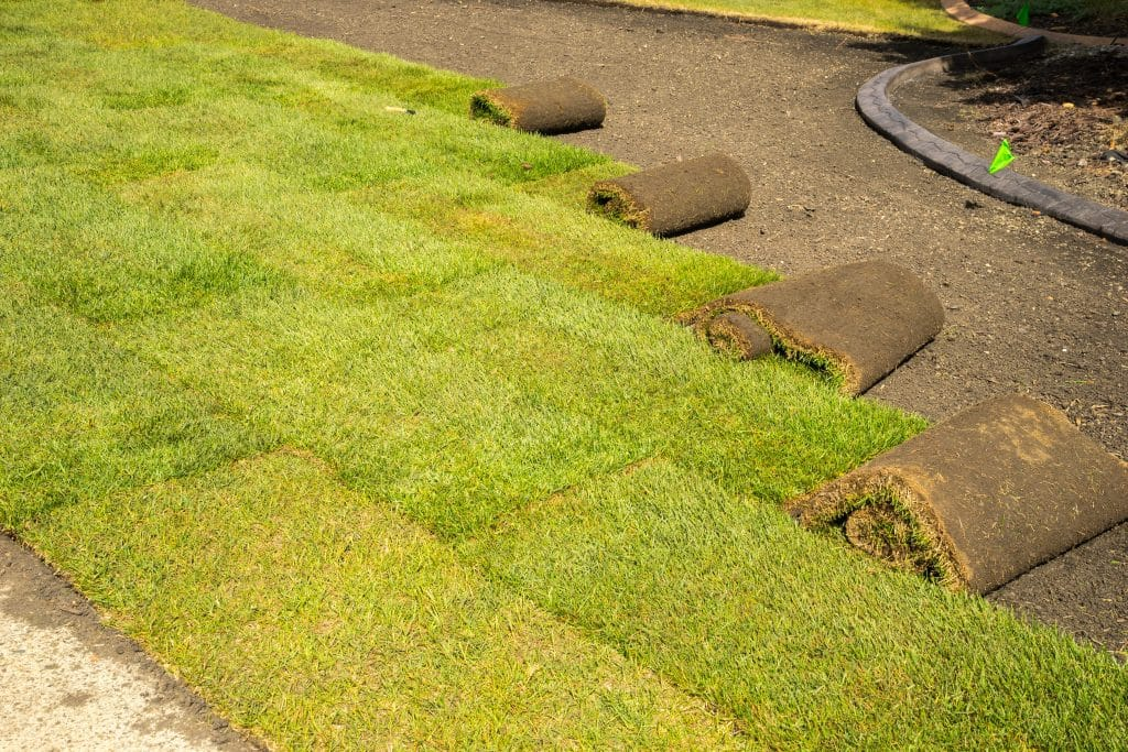 Florida sod installation
