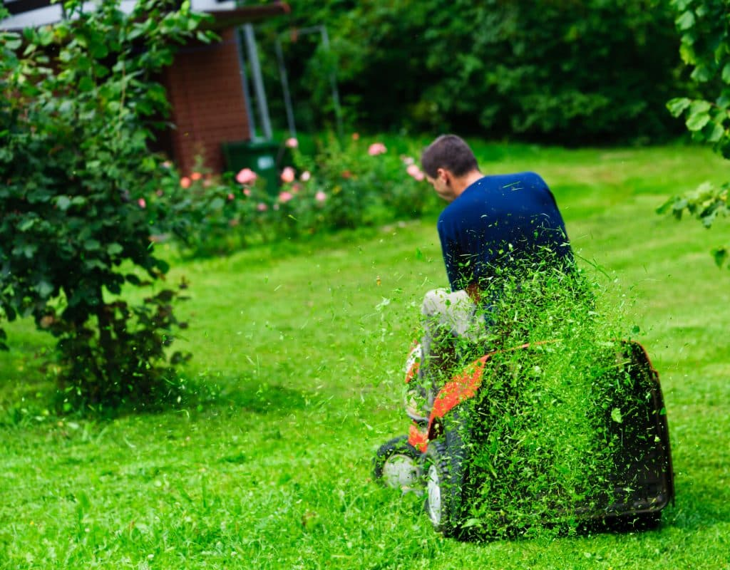 homeowner mowing new sod