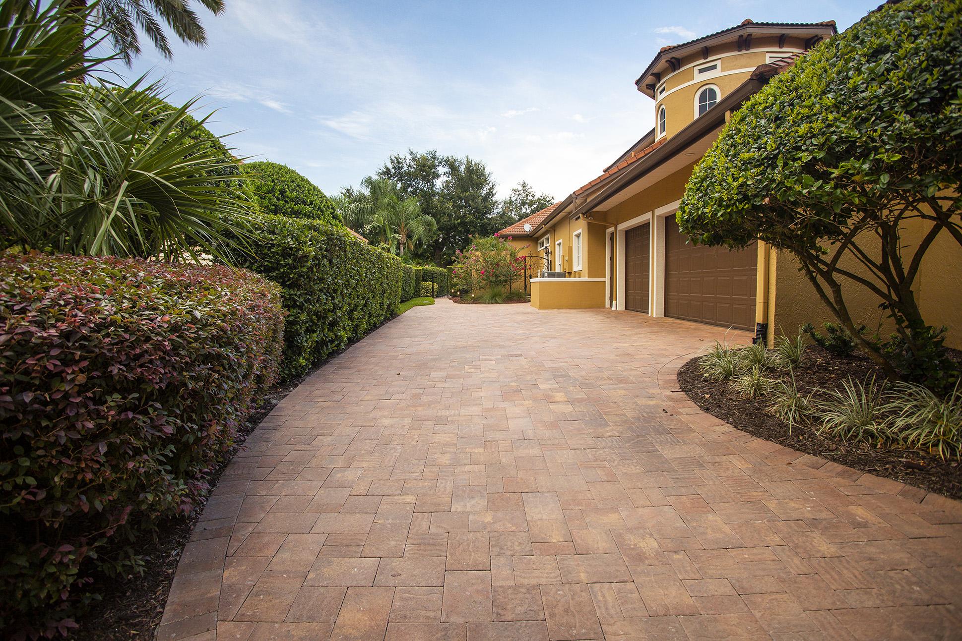 paver plantings driveway tree