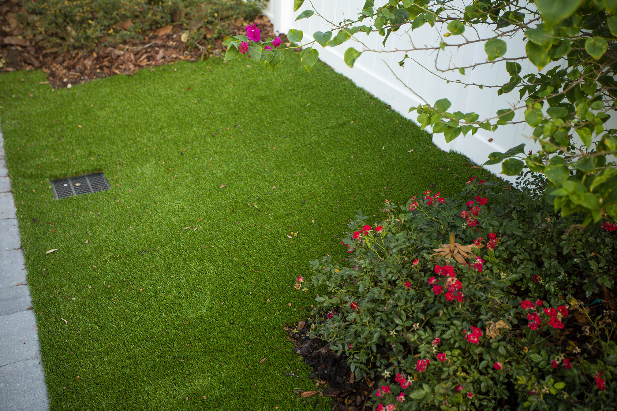 Lawn with artificial turf in Florida