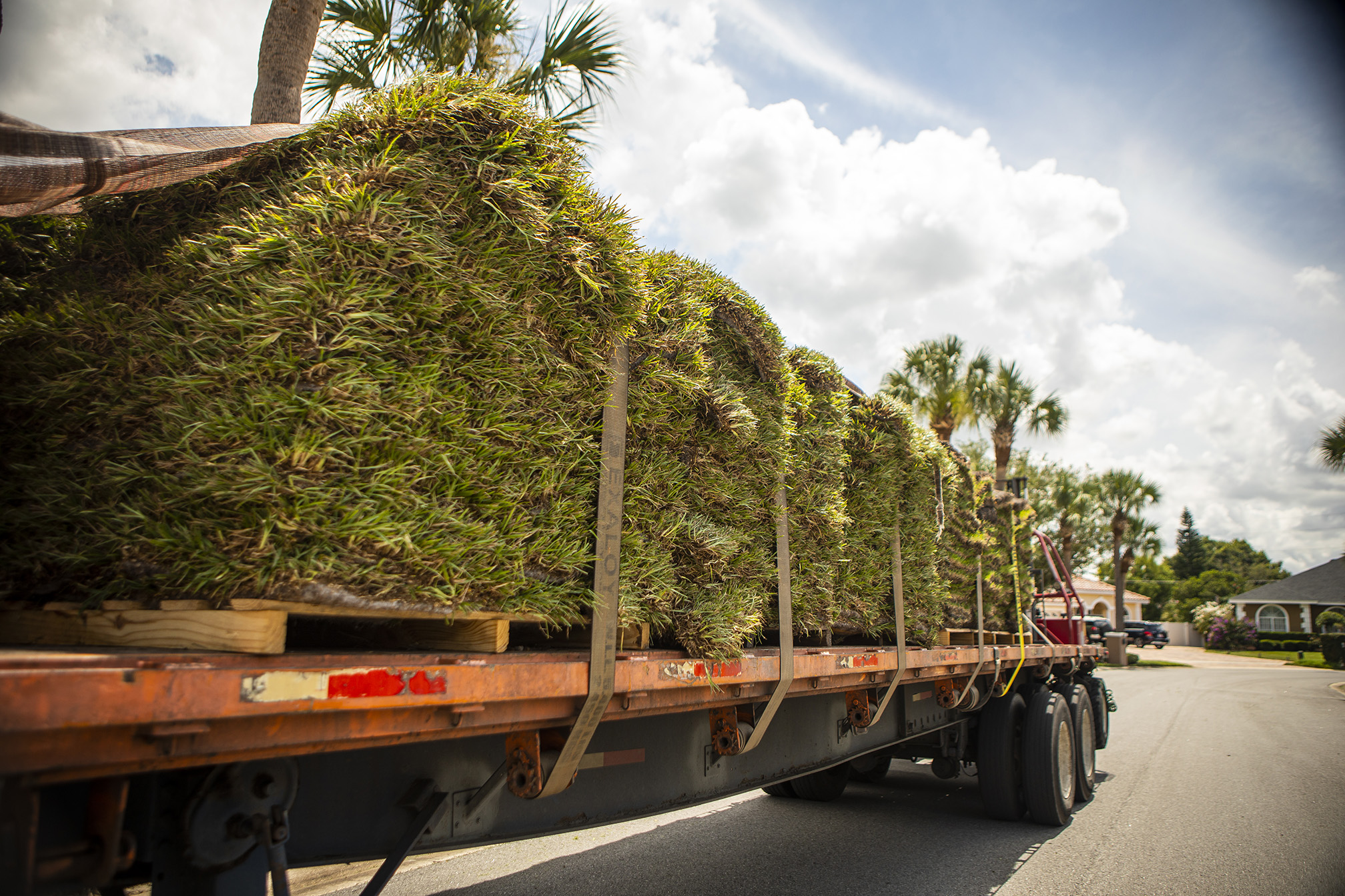 Sod bring delivered in Orlando, FL