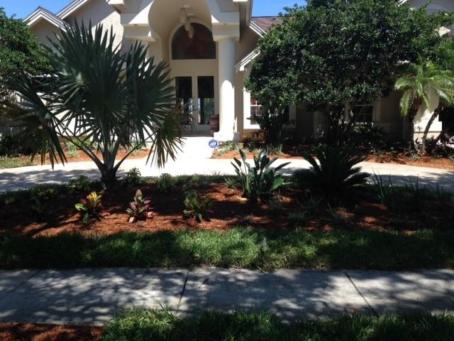 Orlando Landscape Design